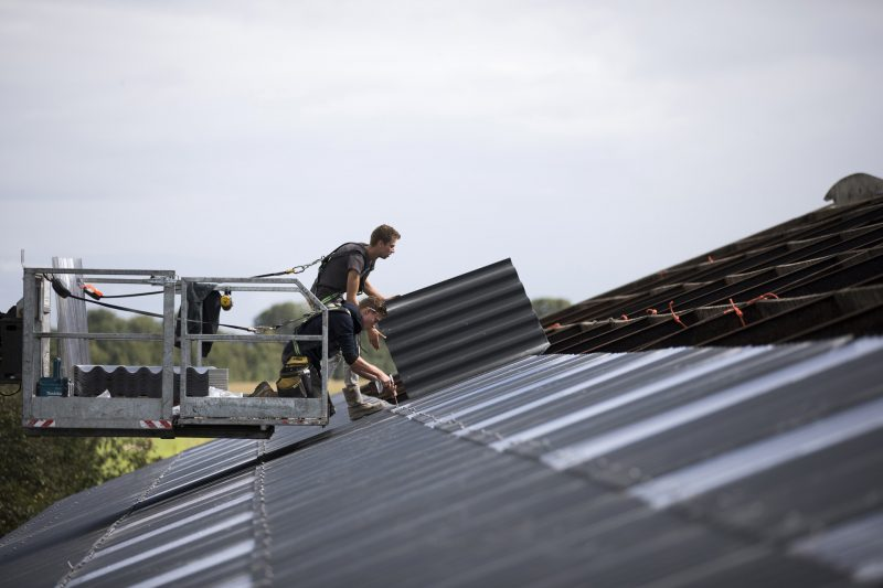 Golfplaten dak ligboxenstal vervangen - Bouwbedrijf Wilms B.V.